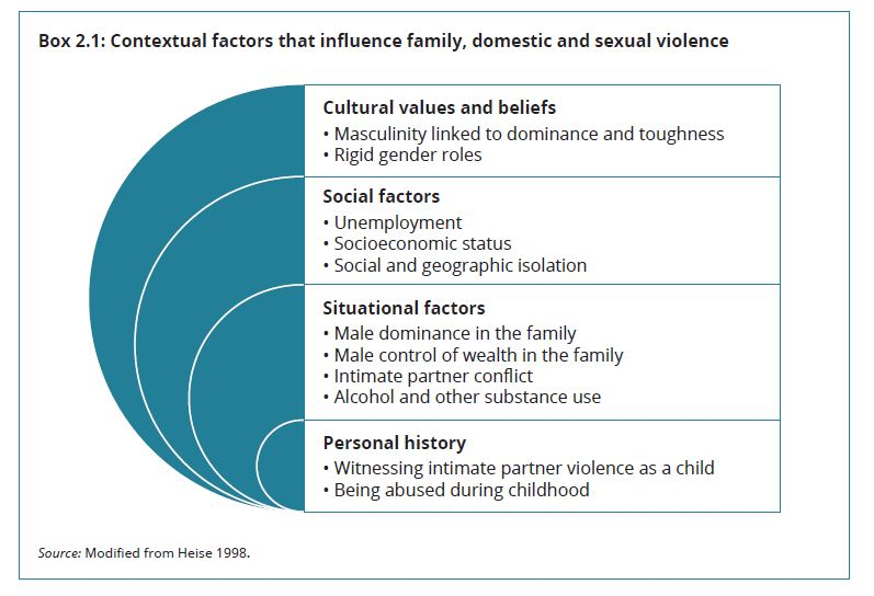 Contextual factors that influces FD&S violence